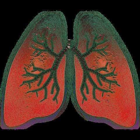 Terapii pentru ameliorarea simptomelor la pacienții astmatici lung 4051083  480
